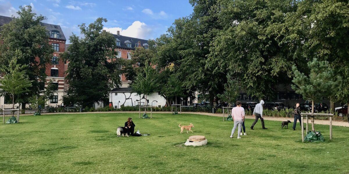 Efter metrobyggeriet: Beboerne har atter indtaget Nørrebroparken