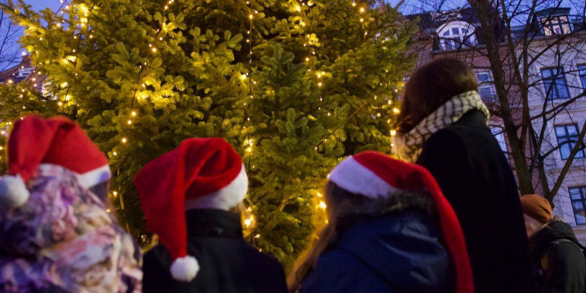 Jul 2020: Her kan du opleve coronasikker julehygge på Nørrebro