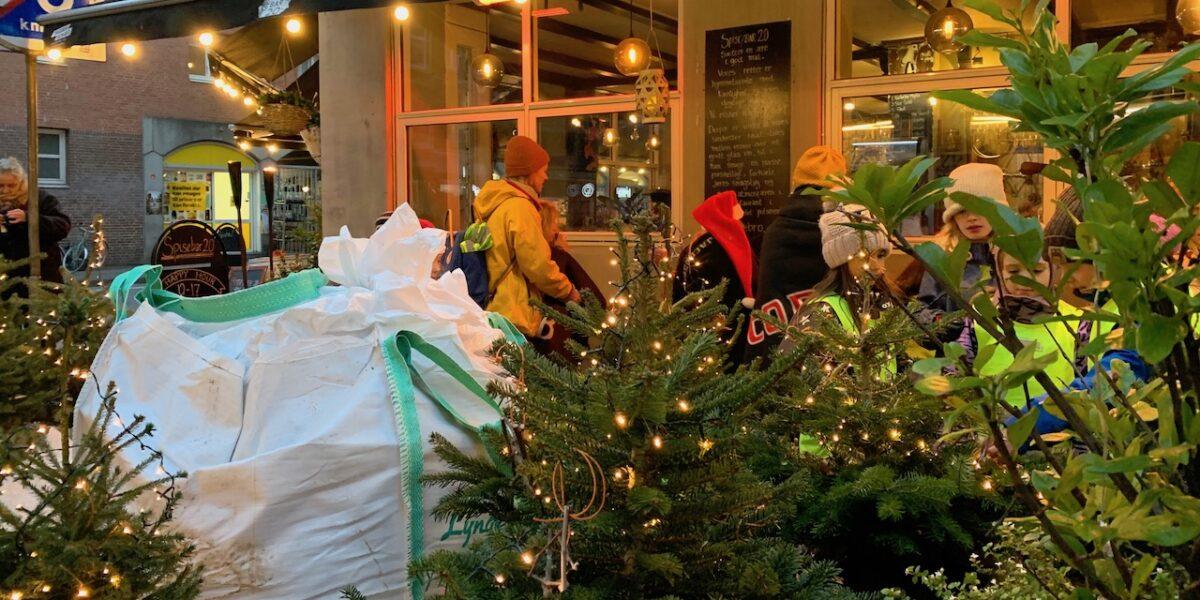 Grønt genbrug: Rantzausgades juletræer lever videre som mobil byskov